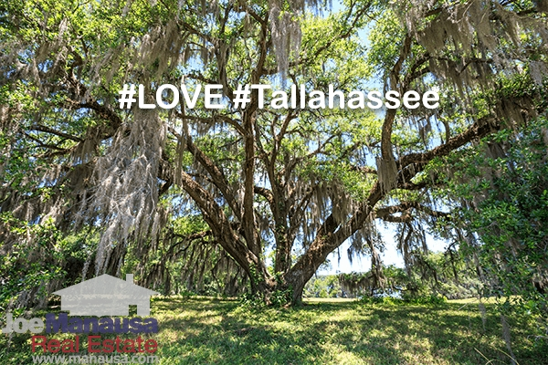 What You Must Know To Live The Tallahassee Life
