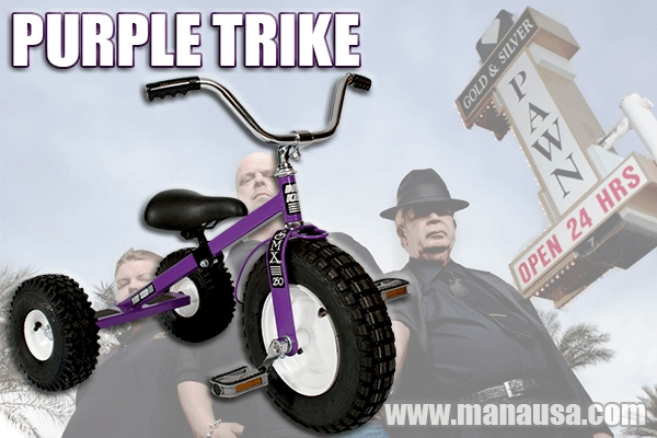 What A Purple Trike Can Teach You About Selling A Home