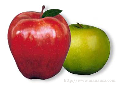 Picture Of Apples To Apples Comparison