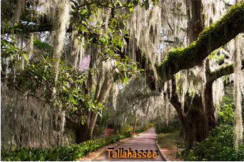 Where To Retire - Tallahassee Florida