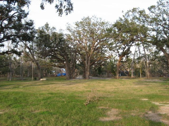 tallahassee-vacant-lot-picture